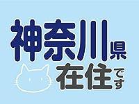 在住マグネットステッカー [デザイン:F.ねこそら - 14.神奈川県] 約100×75ミリ 他県ナンバー狩り 猫 ねこ ネコ 神奈川 コロナ対策 在住マグネット いたずら防止 防犯 あおり対策 県外ナンバー マグネット 在住 他県ナンバー 地元在住 普通郵便発送
