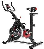 ISE Bicicleta de spinning, bicicleta estática para entrenamiento fitness en casa, volante de...