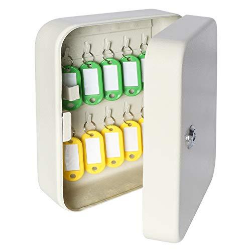 Parrency Security - Caja de llaves de metal con 48 ganchos, gran armario de seguridad ajustable para montaje en pared, 11 4/5' x 9 1/5' x 3' (llavero incluido)