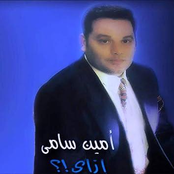 Amin Samy 2013