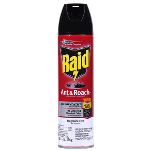 Raid Ant and Roach Killer Fragrance Free, 17.5 OZ (Pack - 1)