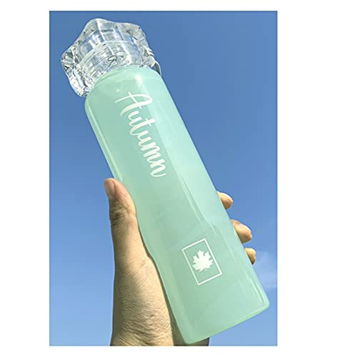 420 ml Letter Gedrukt Glas Draagbare Handheld Student Glas Waterfles Glazen Fles Kawaii Ice Cover Four Seasons Color Cup…