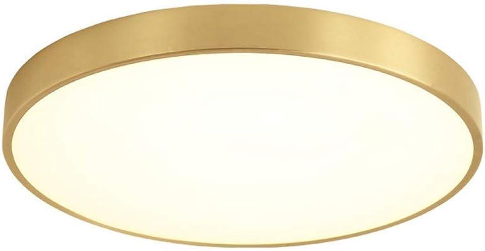 15W LED Plafonnier Rond Design Moderne Acrylique et Laiton Brossé pour Chambre Salon Cuisine Bureau Balcon Couloir 3 Températures De Couleur Diamètre 20 x 4 cm 1050LM