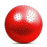 2 Piezas Bola de Yoga a Prueba de explosiones Espesar la Bola de Equilibrio Estable Bola de Ejercicio físico Pilates 55CM / 65CM / 75CM Bomba de Aire 65cm