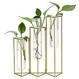 SUMTree Florero de cristal y metal, tres rejillas, tubo de ensayo, soporte para plantas, jarrón de cristal para casa, cafetería, habitación, mesa, fiesta, boda, decoración (dorado)
