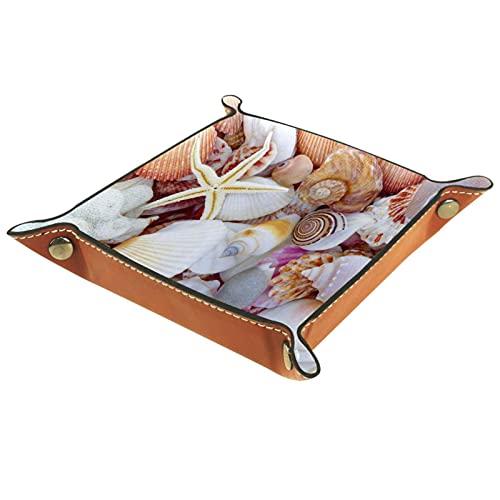 Piccola scatola portaoggetti, svuotatasche da uomo,Sfondo con Seashell Lotti di conchiglie di mare incredibili,Organizer in pelle catchall per portamonete portachiavi