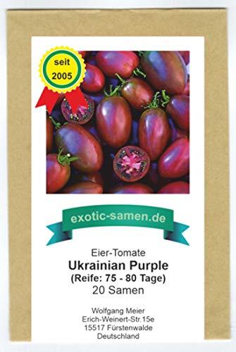 Eiertomate - Tomate - Ukrainian Purple- Ukranian - 20 Samen