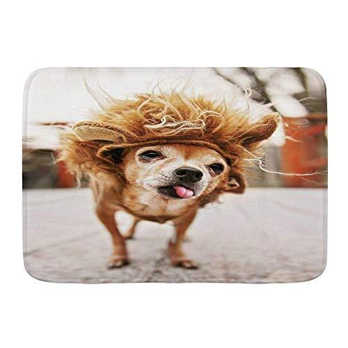 Alfombra de bao,primavera,lindo chihuahua,len,disfraz,animales,vida silvestre,perro,mejor raza,amigo,canino,antideslizante,absorbente,ultra suave,alfombrillas para decoracin de bao(75cm x 45cm)