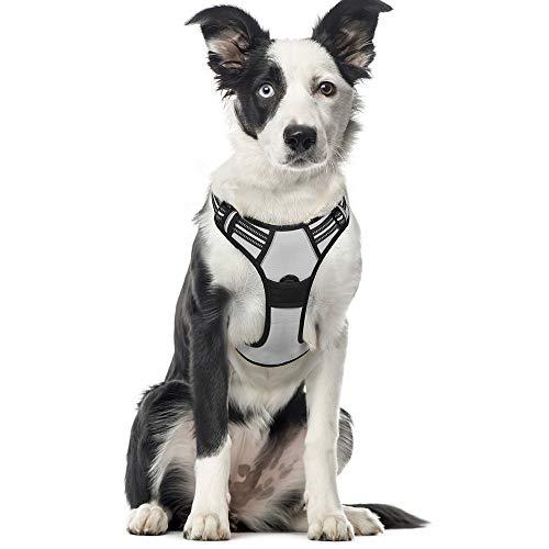 rabbitgoo No-Pull Hundegeschirr für große Hunde Welpengeschirr Einstellbar Weich Geschirr Sicher Kontrolle Brustgeschirr Gepolstert Dog Harness Grau XL