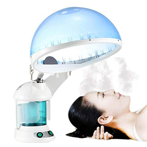 WYZXR Facial Steam Ironing Machine 2 in 1 Hair Therapy Steam Iron Family Ozone Steam Ion Sprayer Skin Beauty Care Machine Family Spa Beauty Salon Use/A