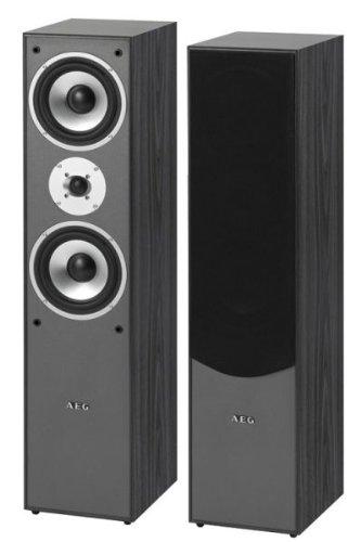 AEG LB 4711 Haut-parleur vertical Puissance 500 W...