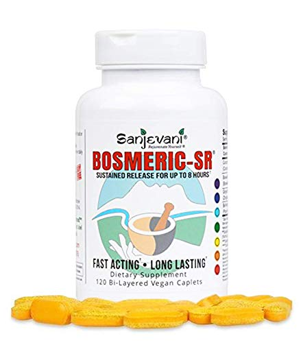 Bosmeric SR Turmeric Curcumin C3 Complex Boswellin PS Boswellia Frankincense Ginger BioPerine Black Pepper Bilayered Fast Acting & Sustained Release 8 hours Joint Immune Support & Relief - 120 Caplets