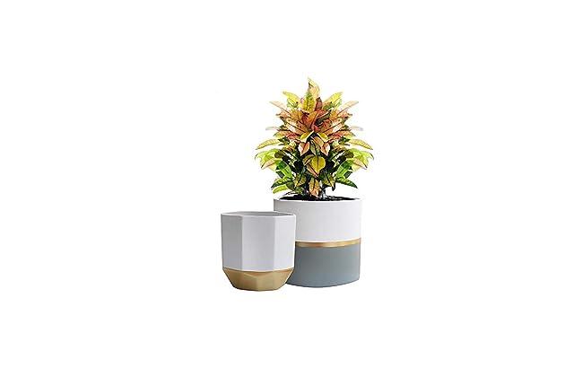 f846db3872 White Ceramic Flower Pot Garden Planters 6.5