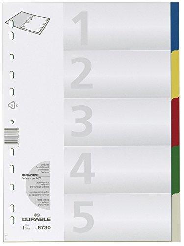 DURABLE Hunke & Jochheim Register, PP, blanko, farbige Taben, DIN A4, 210/220 x 297 mm, 5 Blatt (10er Pack 1 - 5)