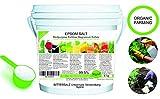 Abono Ecológico Sales de Epsom (sulfato de Magnesio) FERTILIZANTE DE MAGNESIO HUERTA 7 kg Abono Rosales, Tomates, Cítricos y Frutales Favorece el Crecimiento de Cultivos, Jardines, Plantas Interior