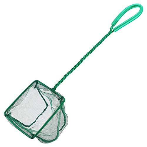 Pawfly 4 Inch Aquarium Net Fine Mesh Small Fish Catch Nets with Plastic Handle  Green