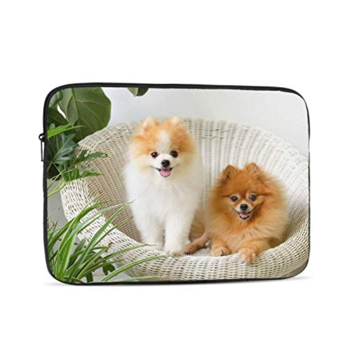 MacBook Pro Case 2018 Cute and Playful Pomeranian Mac Book Pro Covers Multi-Color & Size Choices 10/12/13/15/17 Inch Computer Tablet Briefcase Carrying Bag