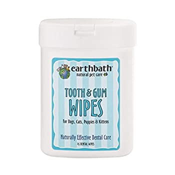 Earthbath Tooth & Gum Wipes for Dogs & Cats - Naturally Effective Dental Care Minty-Fresh Formula - The Easy & Convenient Solution to a Clean Mouth for Your Pet - 25 Count Pack of 2