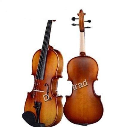 D Z Strad Violin Model 100 with case, bow, shoulder rest, and rosin (1/2 - Size)