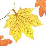 EASY JOY Geburtstag Dekoration Herbst Blätter Girlanden Party Deko Orange - 5