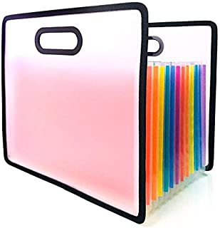 Expanding File Folder, Hand-Held Multi-Color Accordion Files Box A4 Document Organizer, 12 Pockets High Capacity Plastic Stand Bag with Colored Labels for Office/Business/Study