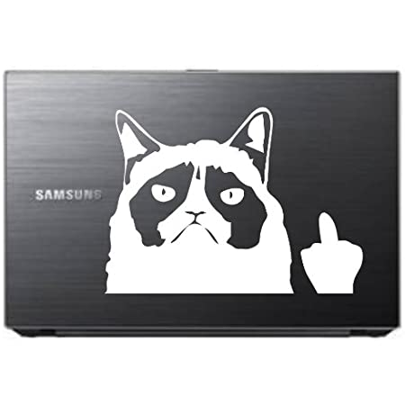 White Keen Grumpy Cat Meme Flippin You Off Funny Decal 6 X 4 in