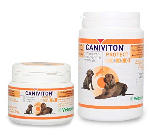Vetoquinol CANIVITON Protect 90 comprimés