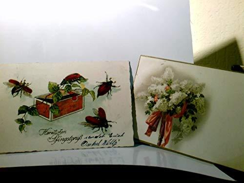 Pfingstgruß. Set 2 x alte AK farbig. 1 x Fliederstrauß mit Schärpen, gel. 1917. 1 x Maikäfer, Zigarrenkiste, Zweige, gel. 1934