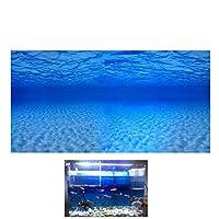 Keynis 水族館ポスター 水槽背景 水槽 水族館タンクステッカー 3D 片側 魚タンク バックグラウンド 風景ポスター アクアリウム内装 貼り付け 雰囲気を作り出し 自己粘着設計 無毒 水中 全6サイズ' (76*56cm, 浅瀬)