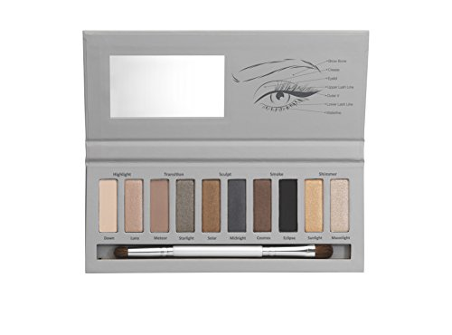 New CID Cosmetics Smokey Classics Palette 10 Shade Eyeshadow palette with brush