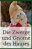 Die Zwerge und Gnome des Hauses: Gartenzwerg Familiennotizbuch | schreiben Sie Ihre Geschichte | sein Kommen | Gartenzwerge | Zwerg | 100 Seiten Kleinformat | Nanomanen | Weihnachtsgeschenk