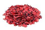 Clever Creations - Pétalos de Rosa sintéticos para Decorar - para Bodas, San Valentín, Lunas de Miel y Aniversarios - Sin Perfume - Rojo - Pack de 1.000-5x5cm