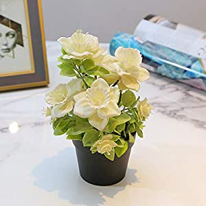 XISENOCI Fashional Simulation Artificial Begonia Flower Potted Plants Realistic Fake Bonsai, Perfect for Decorating Home, Office, Coffee House
