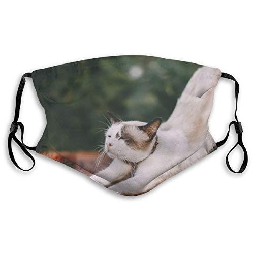 Fillter Face Stretching Body Cat oorbellen, verstelbaar, met stofbeschermfilter, voor jongens en meisjes