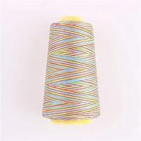 縫糸 カラフルなミシン糸セットナイロン刺繍服縫製品にスプールアップリケスレッドスレッド ミシンアクセサリー (Color : SE0001)