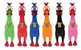 Animolds Squeeze Me Rubber Chicken Toy   Screaming Rubber Chickens for Kids   Novelty Squeaky Toy Chicken Regular Color 6-Pack (Random Colors)