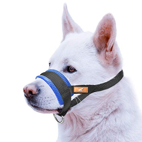 wintchuk Basic Dog Muzzle Prevent from Taking Off by Dogs for Small,Medium and Large Breed,Stop Puppy Biting and Chewing (XXL,Blue)