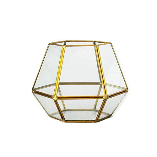 HO-TBO Planta terrario, Hexágono geométrica terrario de Cristal suculento de Planter for...
