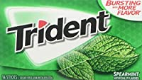 Mondelez Global Trident Spearmint 14 ct [並行輸入品]