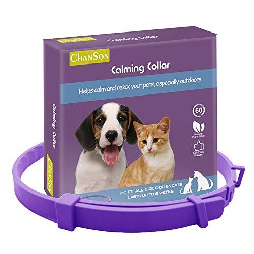 Collar estable para mascotas y gatos Feromona ajustable para reducir trastornos de ansiedad, collar para todos los perros y mascotas