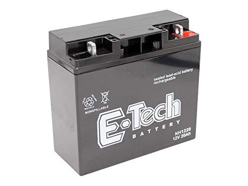 Gel-Batterie 12V 20Ah passend Snapper 570 Rasentraktor