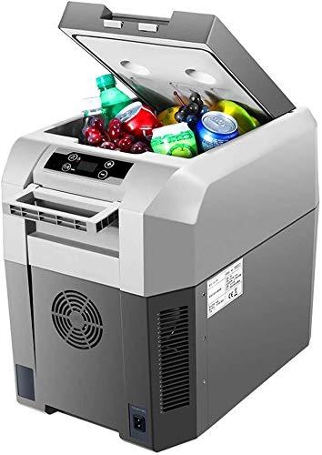 TZSMSSH Joyero Nevera portátil Coche del refrigerador de los Arte congelador están...