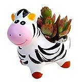Littledream Cute Mini Zebra Ceramic Flower Pot Succulent Cactus Vase Porcelain Planter Window Office Table Garden Decor
