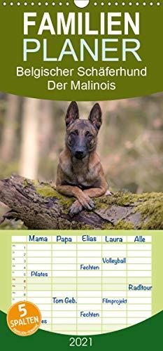 Belgischer Schäferhund - Der Malinois - Familienplaner hoch (Wandkalender 2021, 21 cm x 45 cm, hoch)