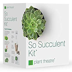 Plant Growing Kit by Super Succulent