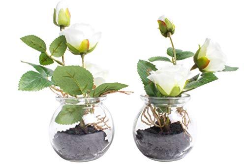 Nova-Nature künstliche Rosen im Glas (2 Stück) (Creme-weiß)