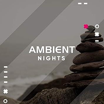 Ambient Nights, Vol. 20