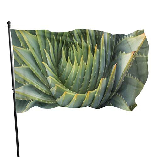 N / A Drapeau,Bannière,Agaves Cactus Polyester Drapeau-Vivid Color and UV Fade Resistant for Outdoor/Indoor Use 150X90 Cm