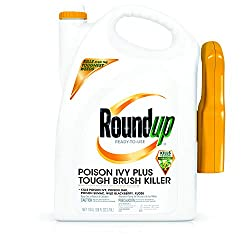 small Ready-to-use Roundup Poison Ivy Plus Tough Brush Killer Trigger with Trigger Spray, 1 gallon