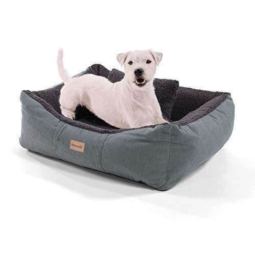 brunolie Emma Kleiner Hundekorb in Dunkelbraun, waschbar, hygienisch und rutschfest, luftiges Hundebett mit Kissen zum Kuscheln, Größe S (59 x 67 x 20 cm)